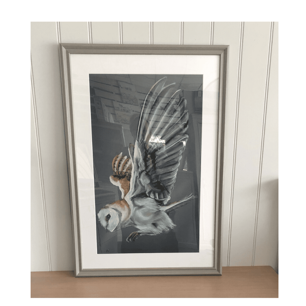 barn owl framed art limited edition