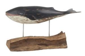 D411 Minke Small Whale
