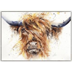 Fancy coo framed canvas lisa jayne holmes