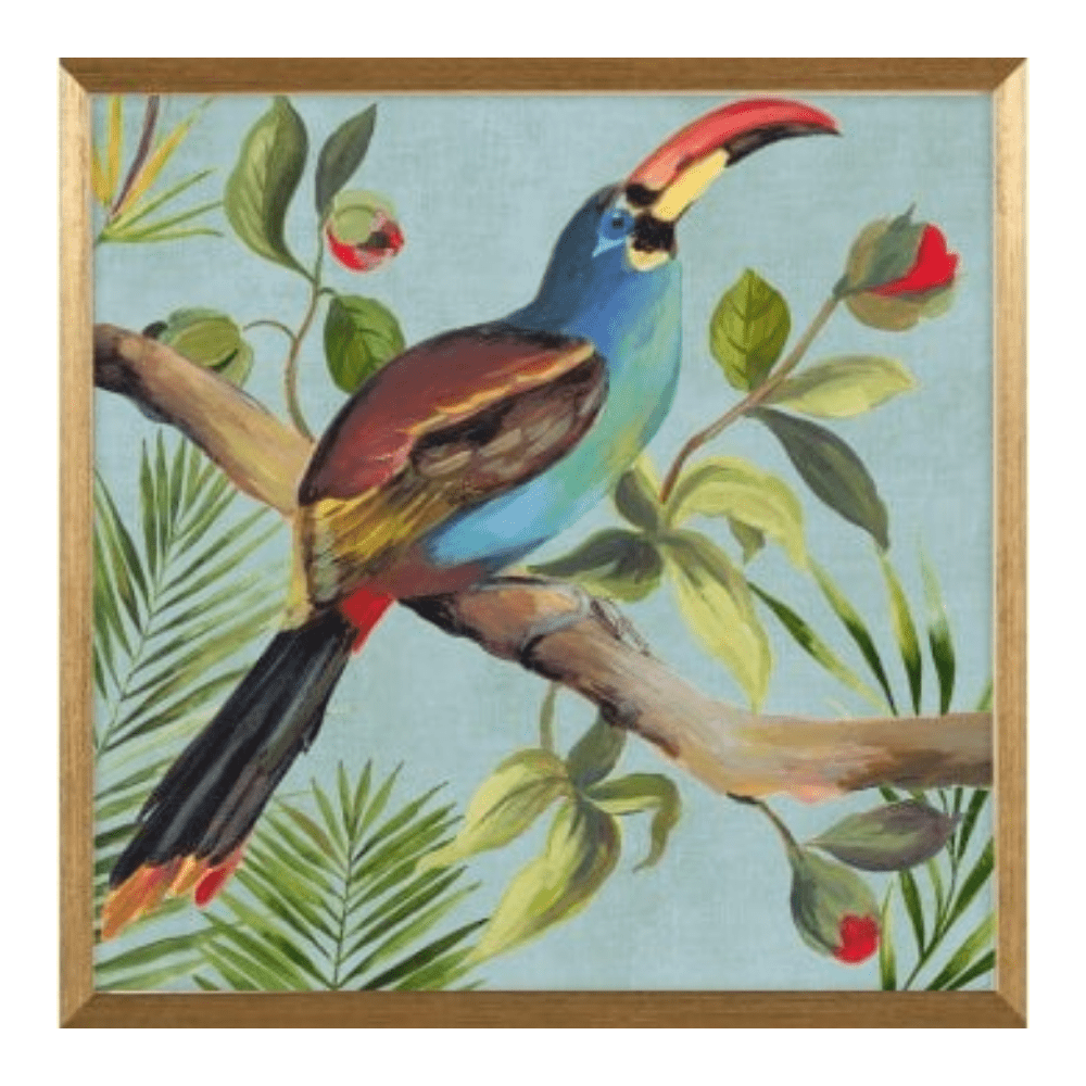 Paradise Toucan framed art